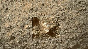 Image of the Day: Curiosity Rover Finds 'Flower' on Mars ...