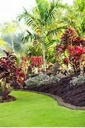 Landscape Tropical Google Themes Landscape Tropical Google Wallpapers Tropical Landscaping Designs Of Tampa Bay Landscape Architects Landscape Designers Best Tropical Landscape Design Ideas Remodel Pictures Houzz