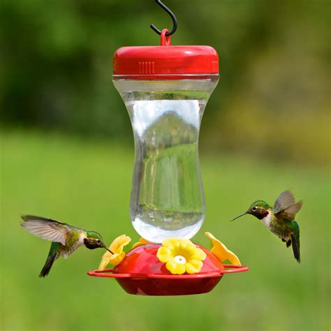 humming bird feeder pet 174 s finest 16 oz top fill glass