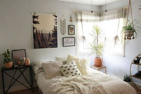 Roommates Cactus