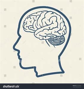 Human Head Brain Illustration Vector Stock Vector ...