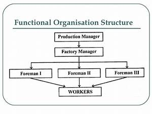 Organizational Structure And Roles