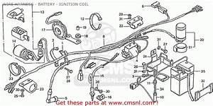 Honda Z50j1 Monkey Germany Wire Harness