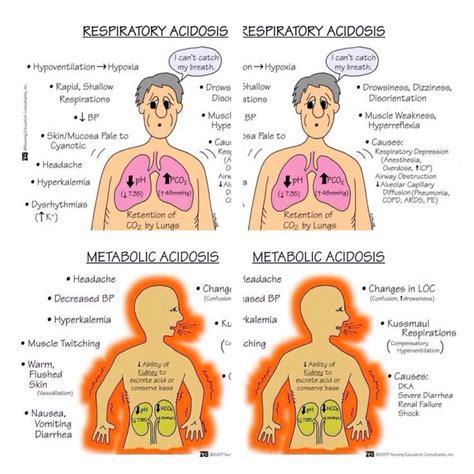 Metabolische system