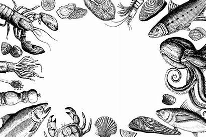 Seafood Vector Drawn Hand Clipart Graphics Concept