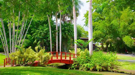 jardin botanico  san juan expedia