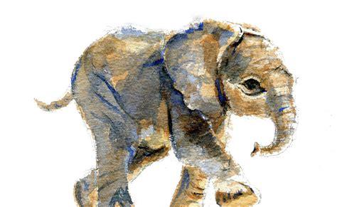 original watercolor of a baby elephant
