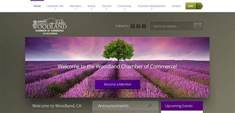Best Website Website Design Woodland Ca