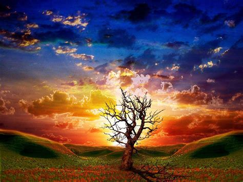 3d Wallpapers Of Nature by 3d Nature Wallpapers Wallpaper Cave