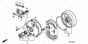 25 Rear Drum Brake Parts Diagram