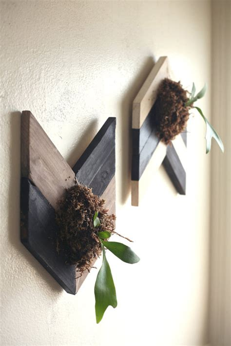 fresh  natural decorations  staghorn fern home