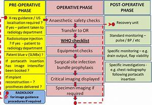 Flow Diagram Illustrating The Perioperative Flow Of