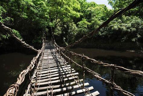 poster pour chambre adulte trek a bali poster pont en bois et liane suspendu