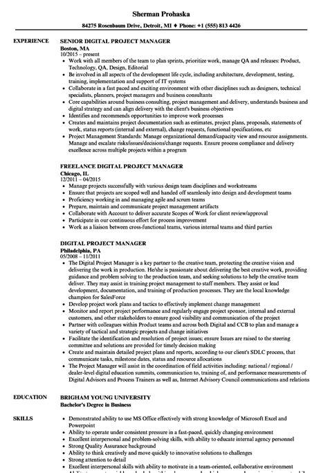 Technical Cv by 16 Cv Digital Manager Sowtemplate