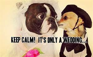 Funny marriage ... Newlywed Advice Quotes
