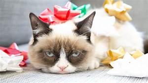 5 ways the internet has ruined Christmas - Memeburn