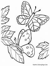 Butterfly Coloring Pages Sheets Cute Realistic Printable Mewarnai Flying Spring Adult Gambar Kupu Bunga Butterflies Drawings Pollinator Animals Cartoon Getcoloringpages sketch template