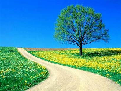Spring Wallpapers Backgrounds Nature Season Tag