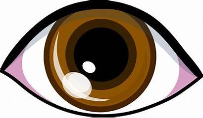 Eye Brown Clip Symbol Simple Symbols Vector