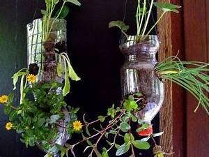 Pflanze In Flasche : 17 bilder zu upcycling auf pinterest upcycling deko und basteln ~ Whattoseeinmadrid.com Haus und Dekorationen