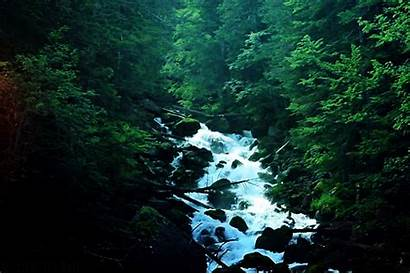 Nature Waterfall Animated Animation Gifs Funny Forest