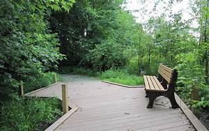 the park bench Wallpaper Background   37506