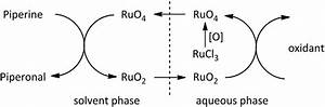 Catalytic Cycle Of The Ruthenium Oxidation