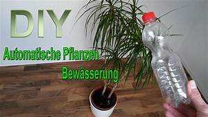 Bewässerungssystem Balkon Selber Bauen : automatische pflanzenbew sserung aus pet flasche selber machen bew sserungssystem bauen diy ~ Whattoseeinmadrid.com Haus und Dekorationen