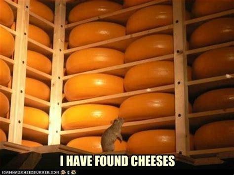 15 best cheesy memes on pics