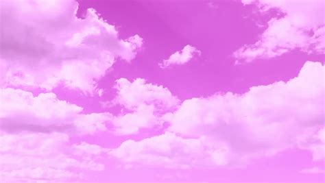 Time Lapse Pink Nice Beautiful Stock Footage Video (100%