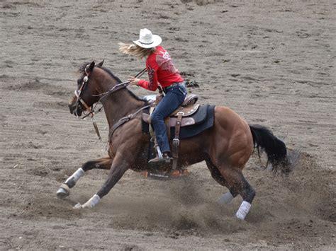 barrel racing quarter horses american horse riders rodeo race performed barrels trip racer fast around arena seconds