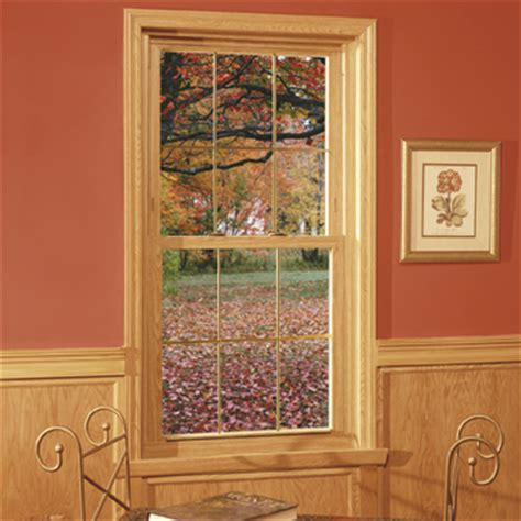 affordable windows doors double hung windows