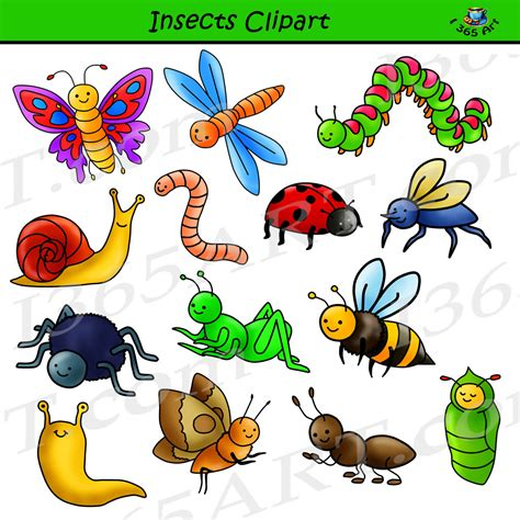 Bug Clip Insect Clipart Set Commercial Use Graphics Clipart 4