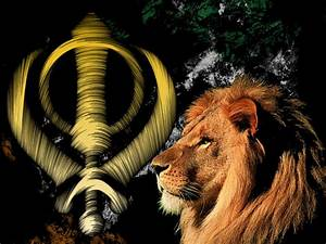 Lion of Sikh by littlebighorse on DeviantArt