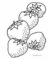 Strawberry Coloring Fresh Strawberries Sheet Fruit sketch template