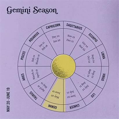 Zodiac Astrology Giphy Gifs Gemini Trigonometry Sanctuary