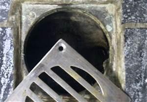 Küchenabfluss Verstopft Wer Zahlt Rohrreinigung : professionelle abflussreinigung das sind die kosten ~ Frokenaadalensverden.com Haus und Dekorationen
