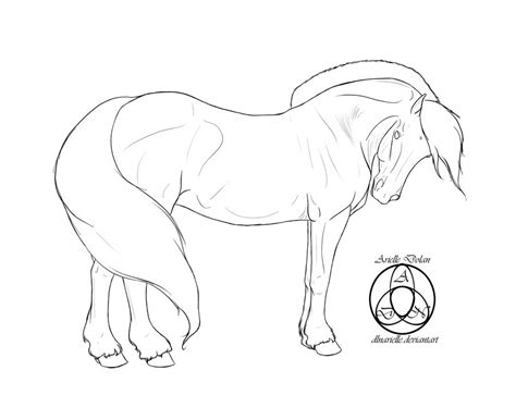 Fjord Drawing by Fjord Horse Coloring Pages Sketch Coloring Page