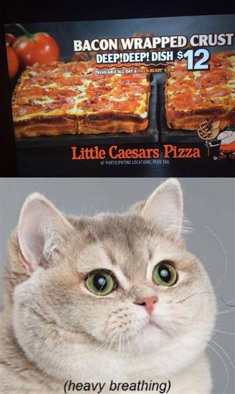Cat Heavy Breathing Meme - heavy breathing cat meme