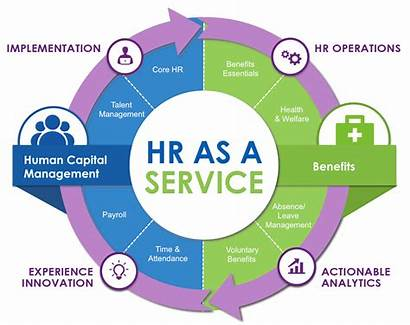 Services Human Capital Management Graphic Data Solution
