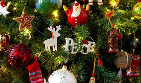 who introfuced christmas trees to britisn top 10 facts about trees express co uk