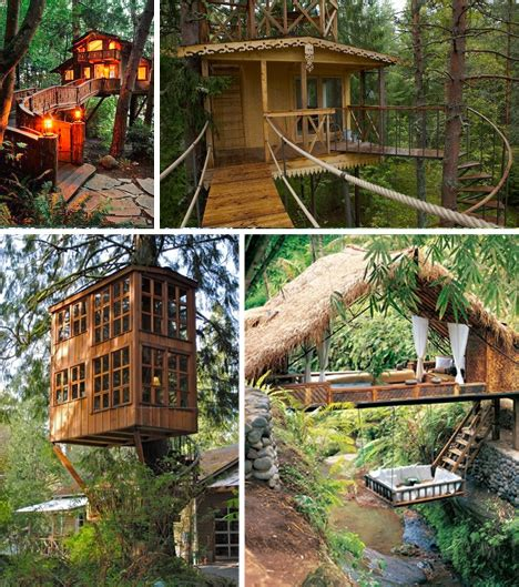 Different Type of Tree House