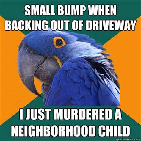 Paranoid Parrot Memes - small bump when backing out of driveway i just murdered a neighborhood child paranoid parrot