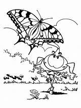 Coloring Pages Snorkels Casey Butterfly Popular sketch template