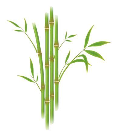 comment peindre une cuisine image bambou plante verte pour la creation