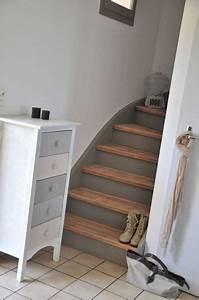 Contre marches peintes en gris interieur pinterest for Peindre escalier bois en gris 10 armoire bois brut 2 portes