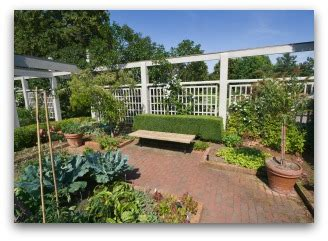 beautiful vegetable garden plans  ideas