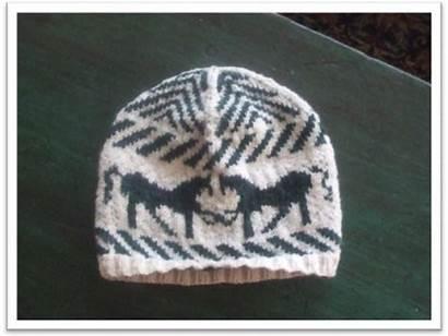 Horse Hat Knitting Knit Beanie Horses Crochet