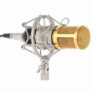 Studio Recording Microphone + Shock Mount + Wind Sponge ...