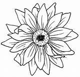 Sunflower Drawing Simple Clipartpanda Line Drawings Outline Flower Sunflowers Tattoo Daisy Place Beccy Clipart Rose Leaf Panda Flowers Pretty Leaves sketch template